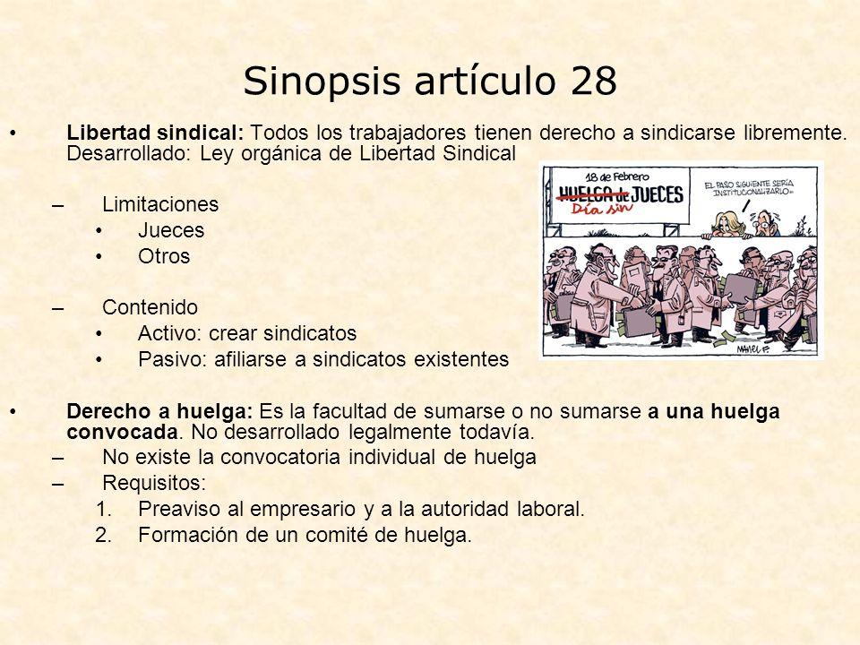 Sinopsis artículo 28
