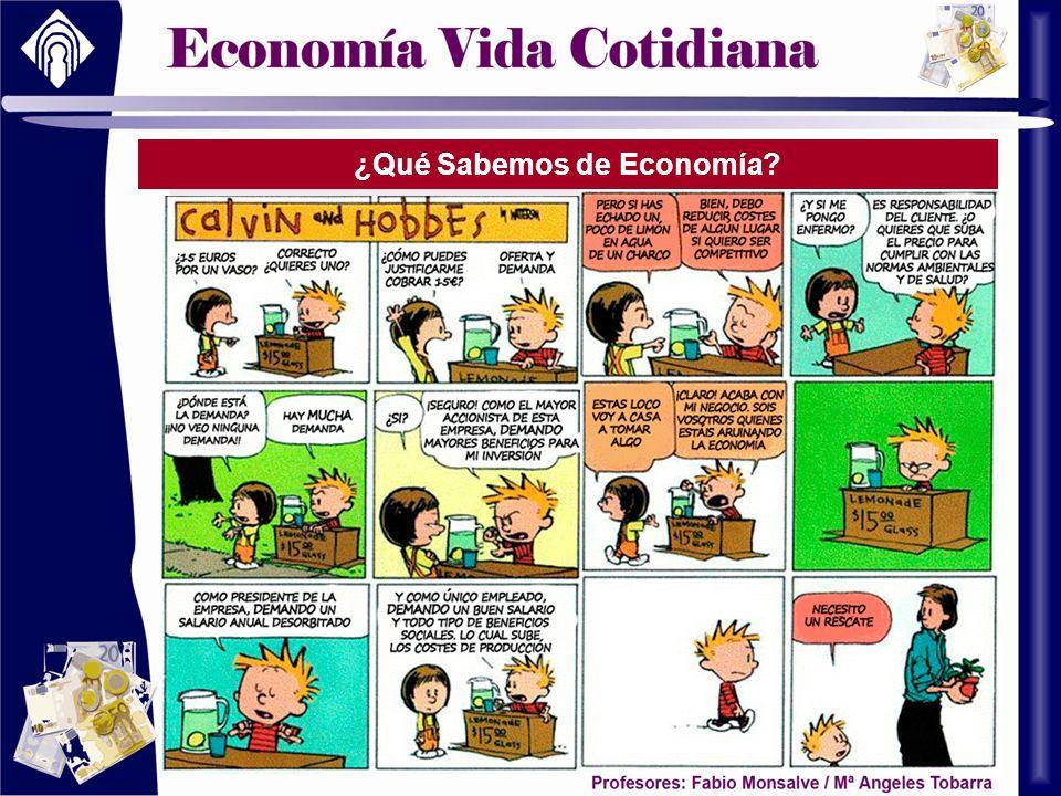¿Qué Sabemos de Economía