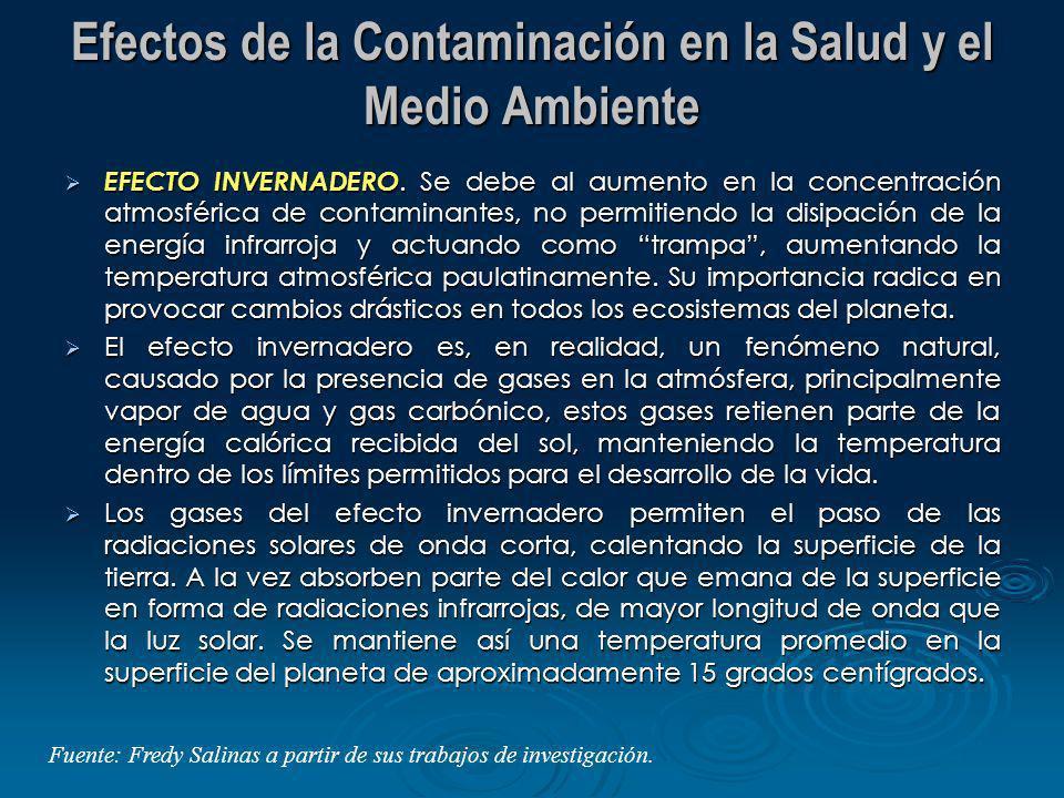 Efectos de la Contaminación en la Salud y el Medio Ambiente
