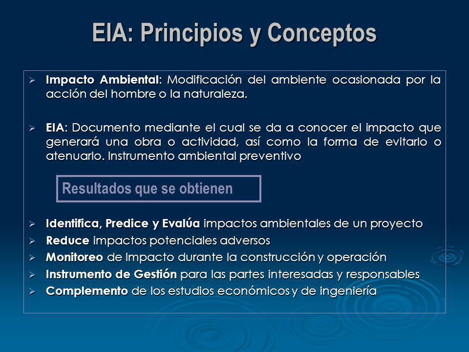 EIA: Principios y Conceptos