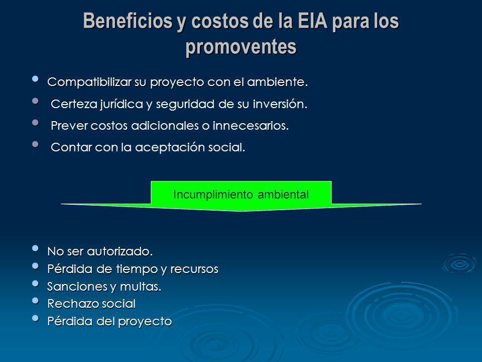 Beneficios y costos de la EIA para los promoventes