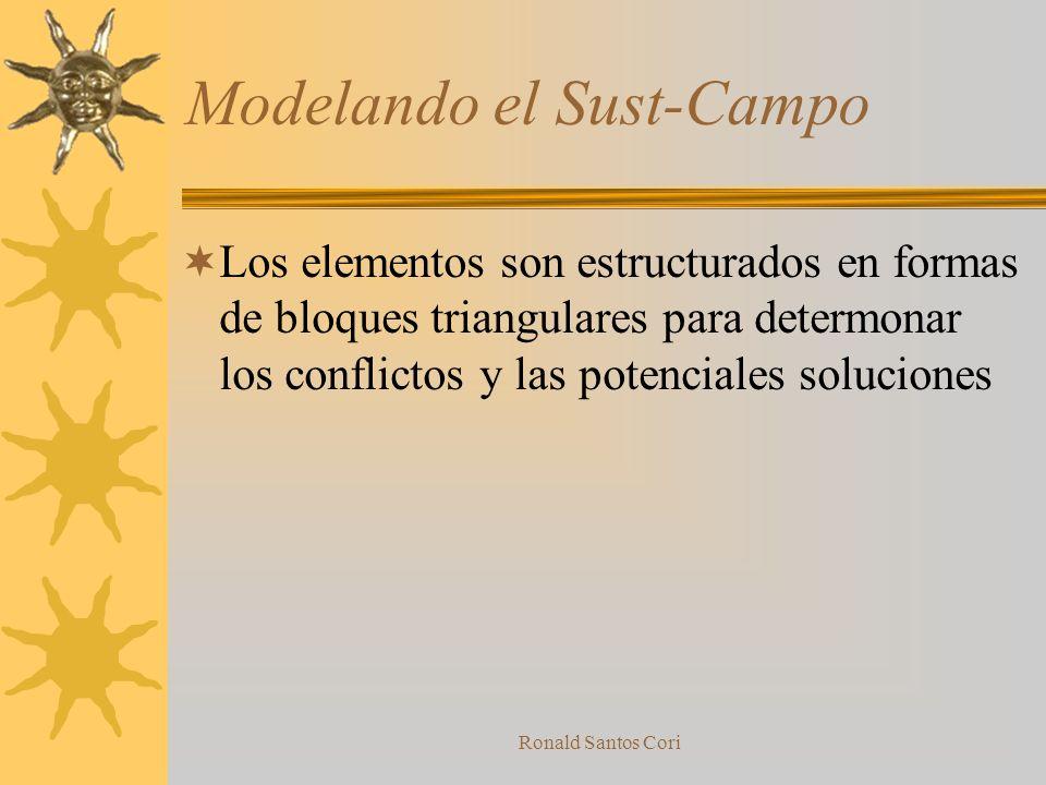 Modelando el Sust-Campo