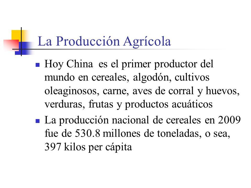 La Producción Agrícola