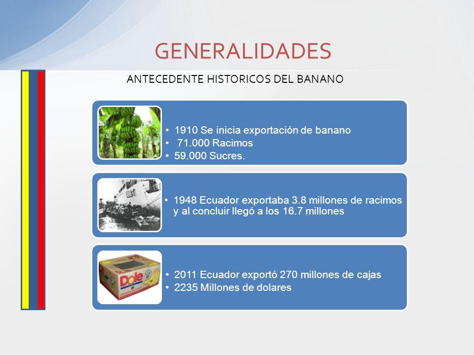 ANTECEDENTE HISTORICOS DEL BANANO