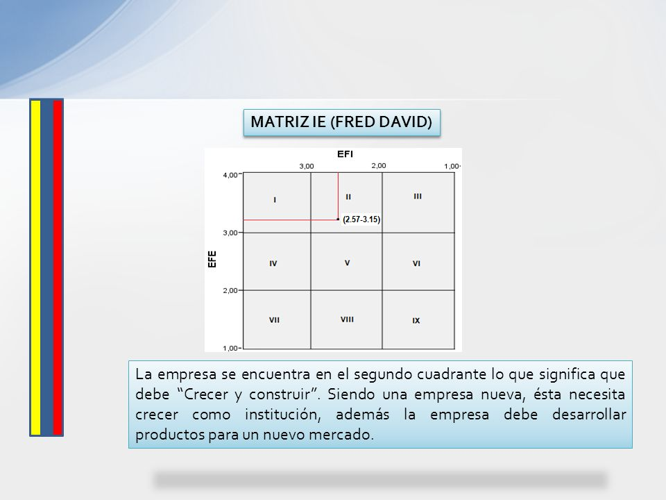 MATRIZ IE (FRED DAVID)