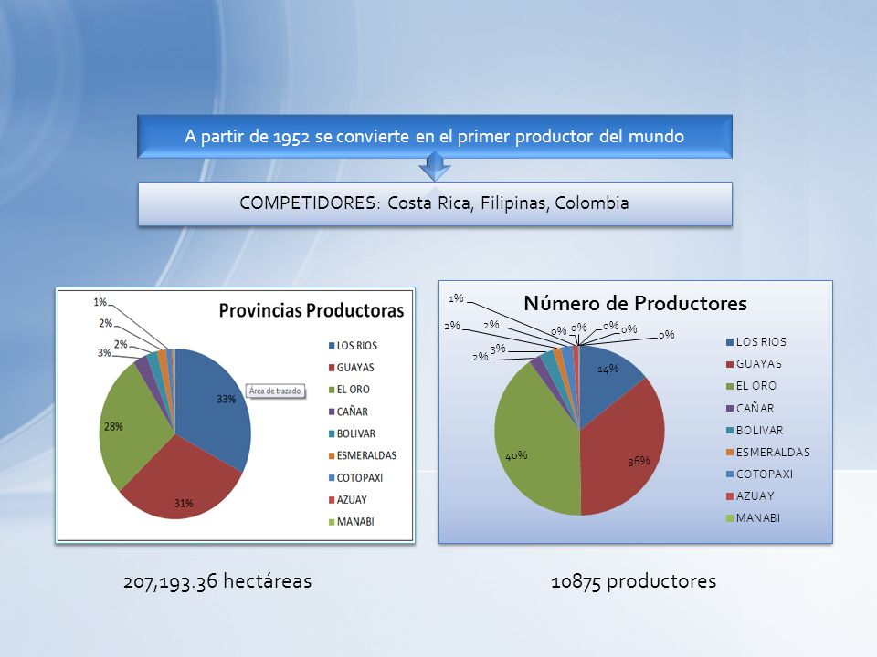 207,193.36 hectáreas 10875 productores