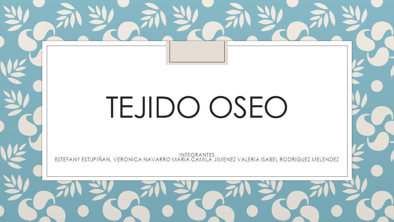 TEJIDO OSEO INTEGRANTES