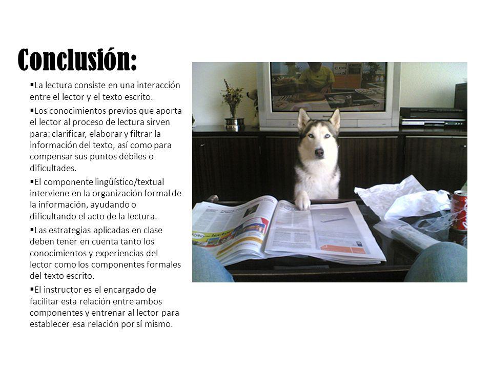 Conclusión: La lectura consiste en una interacción entre el lector y el texto escrito.