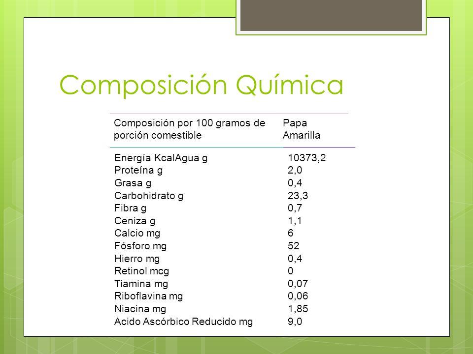 Composición Química Composición por 100 gramos de porción comestible