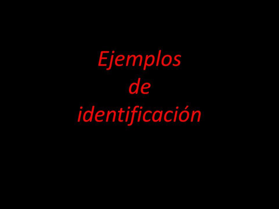Ejemplos de identificación