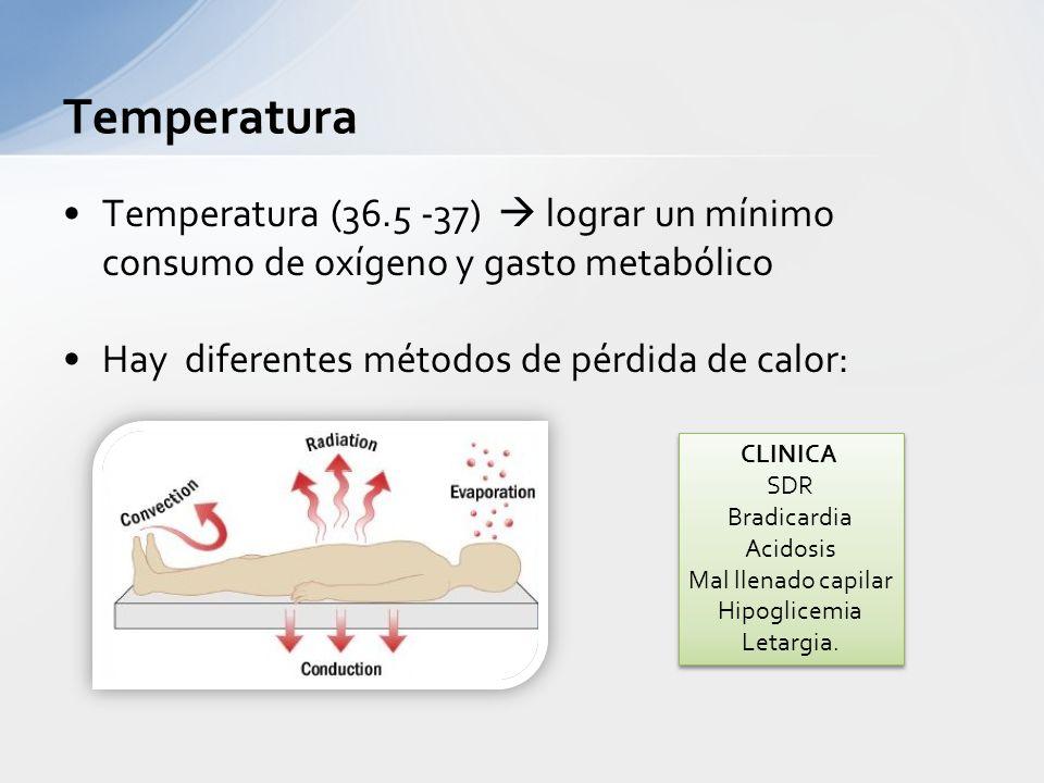 Temperatura Temperatura (36.5 -37)  lograr un mínimo consumo de oxígeno y gasto metabólico. Hay diferentes métodos de pérdida de calor: