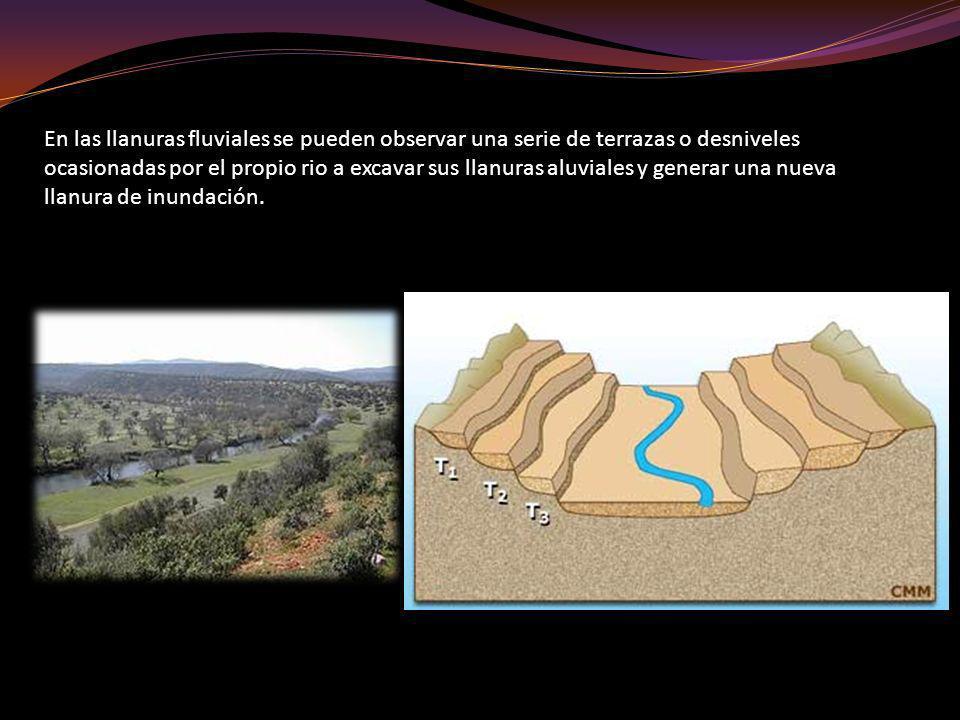 En las llanuras fluviales se pueden observar una serie de terrazas o desniveles ocasionadas por el propio rio a excavar sus llanuras aluviales y generar una nueva llanura de inundación.