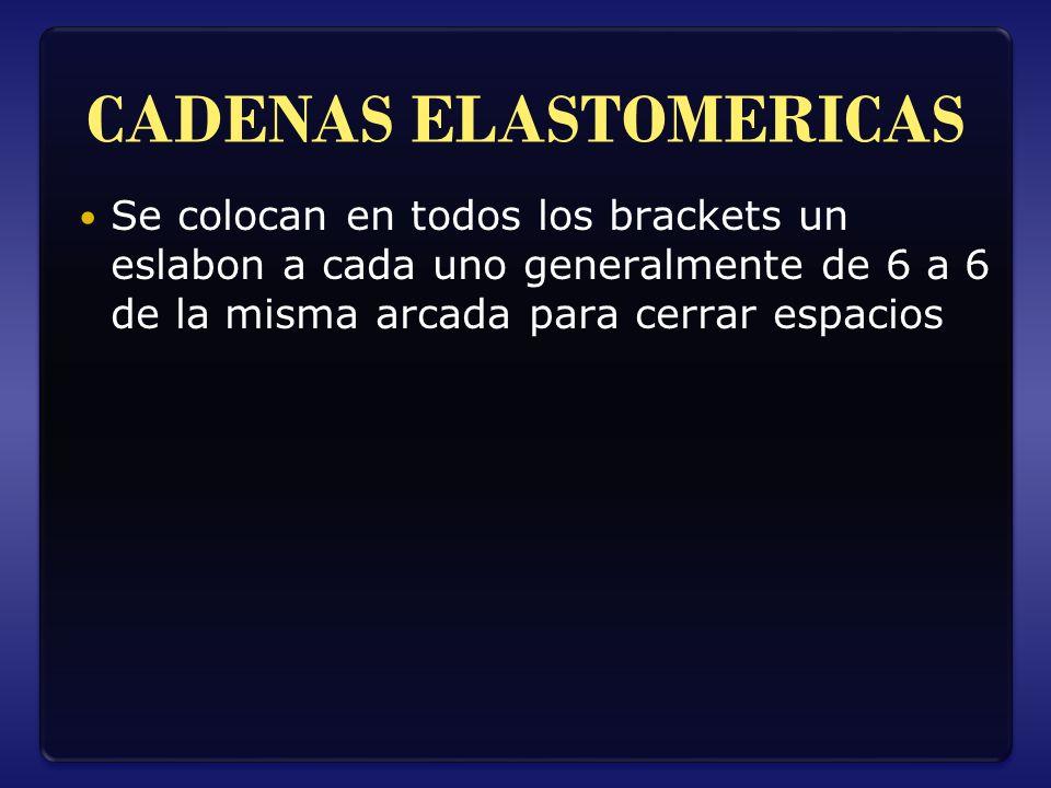 CADENAS ELASTOMERICAS