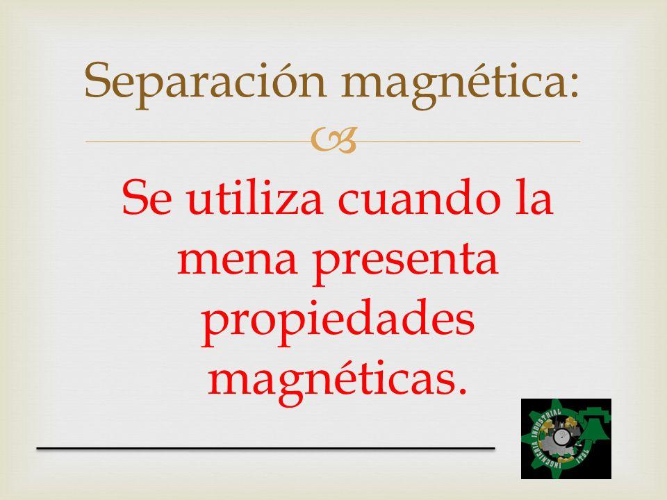 Separación magnética: