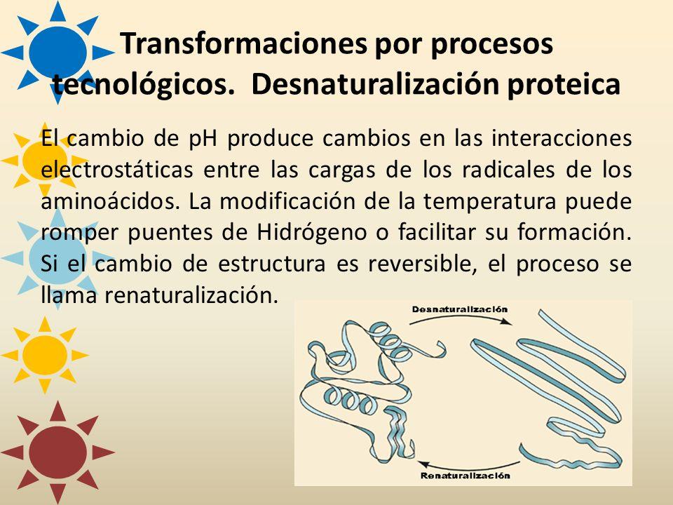 Transformaciones por procesos tecnológicos. Desnaturalización proteica