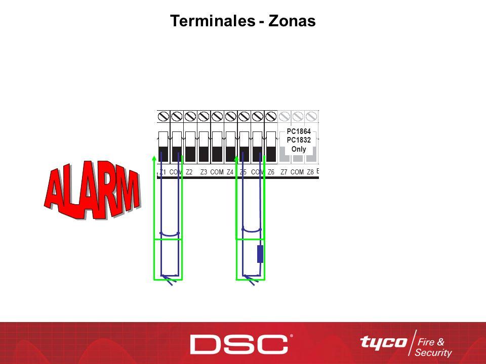 Terminales - Zonas ALARM.