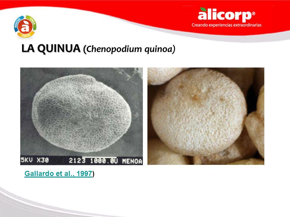 LA QUINUA (Chenopodium quinoa)