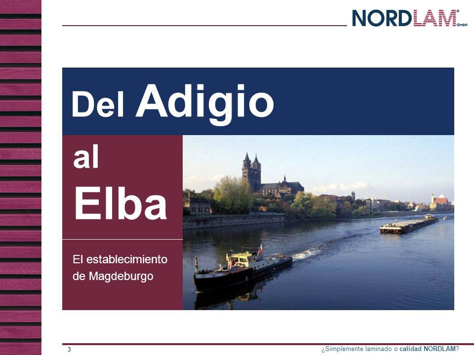 Del Adigio al Elba El establecimiento de Magdeburgo
