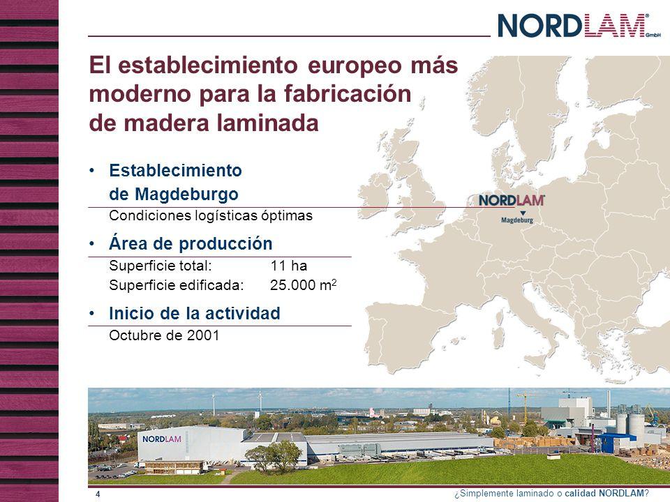 El establecimiento europeo más moderno para la fabricación de madera laminada