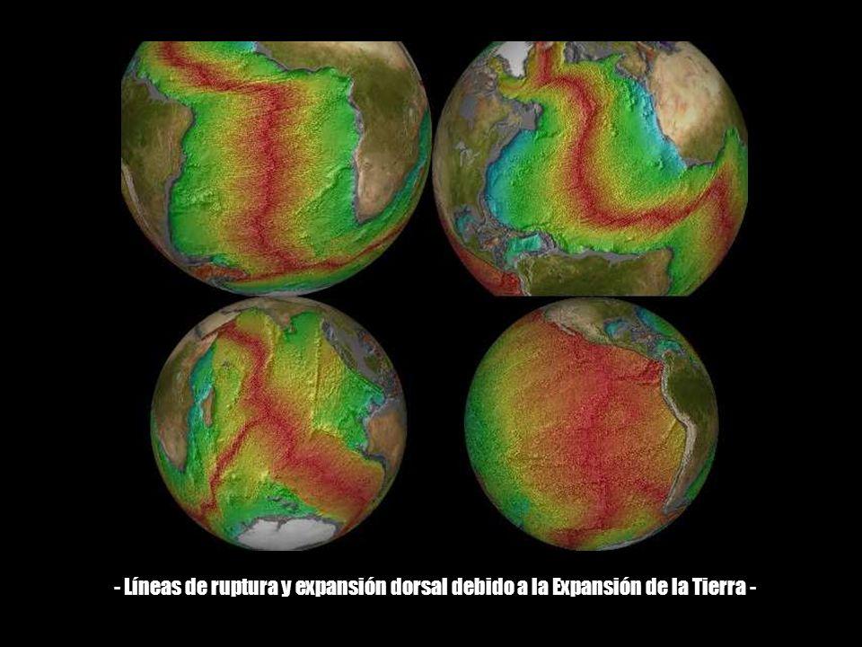 - Líneas de ruptura y expansión dorsal debido a la Expansión de la Tierra -