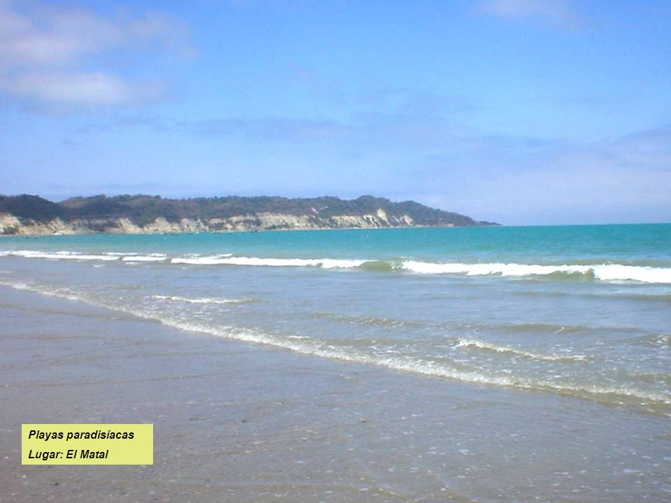 Playas paradisíacas Lugar: El Matal