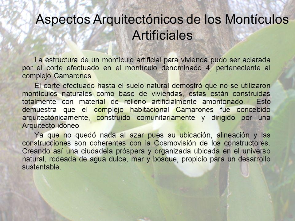 Aspectos Arquitectónicos de los Montículos Artificiales