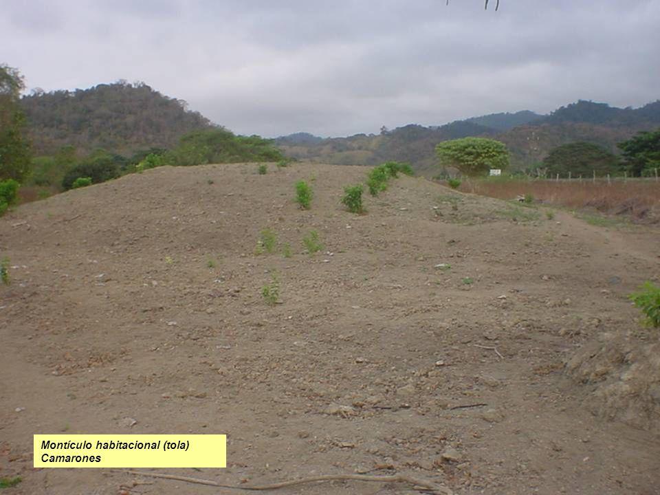 Foto en la Hacienda Camarones montículo reconstruido