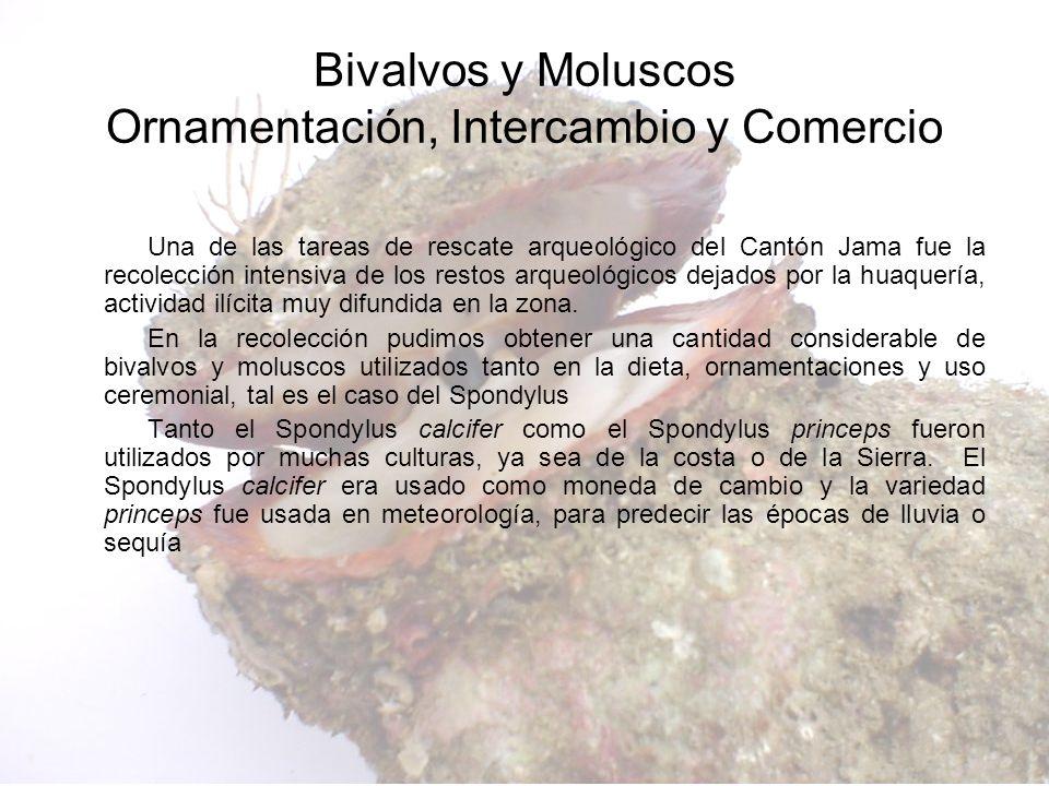 Bivalvos y Moluscos Ornamentación, Intercambio y Comercio