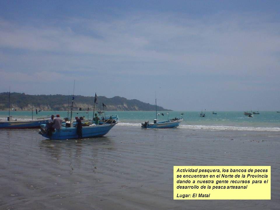 Foto del puerto pesquero el Matal