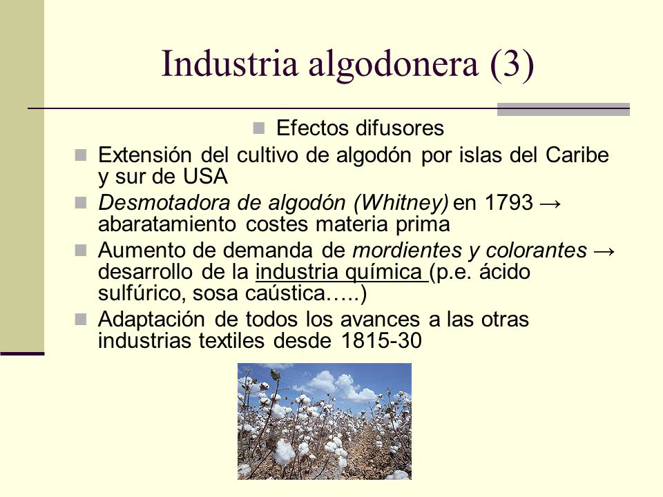 Industria algodonera (3)