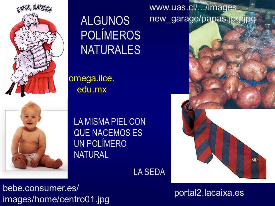 ALGUNOS POLÍMEROS NATURALES