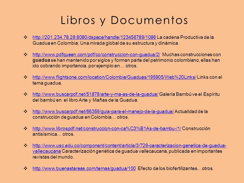 Libros y Documentos