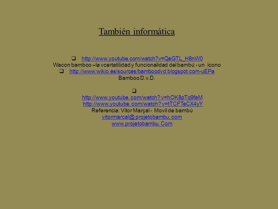 Wacon bamboo –la vcertatilidad y funcionalidad del bambú - un icono
