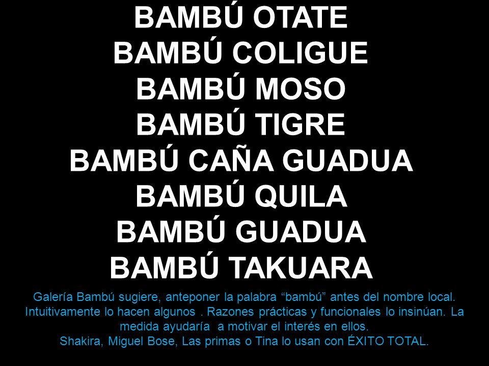 Shakira, Miguel Bose, Las primas o Tina lo usan con ÉXITO TOTAL.