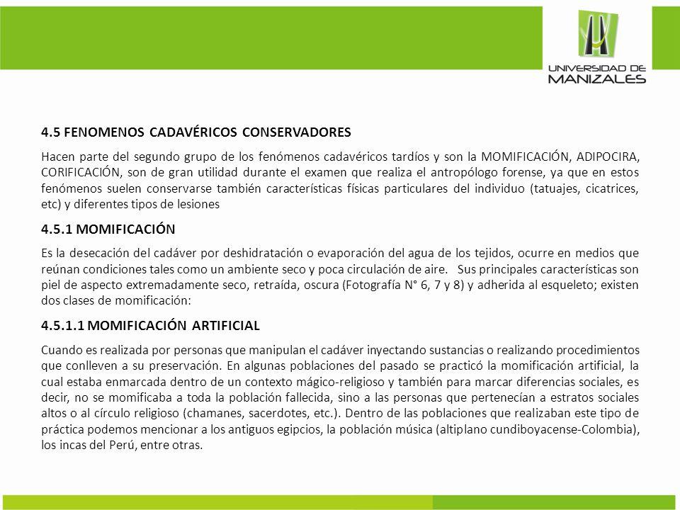 4.5 FENOMENOS CADAVÉRICOS CONSERVADORES
