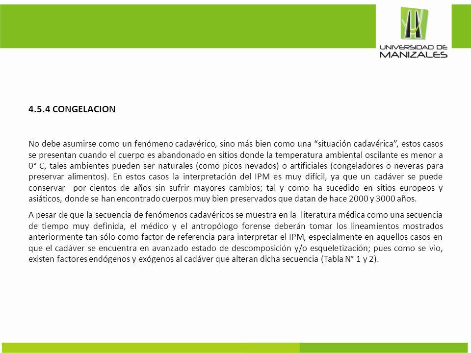 4.5.4 CONGELACION