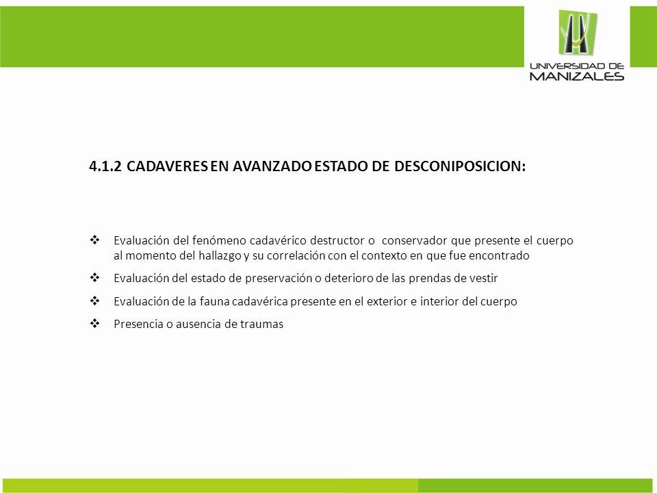 4.1.2 CADAVERES EN AVANZADO ESTADO DE DESCONIPOSICION: