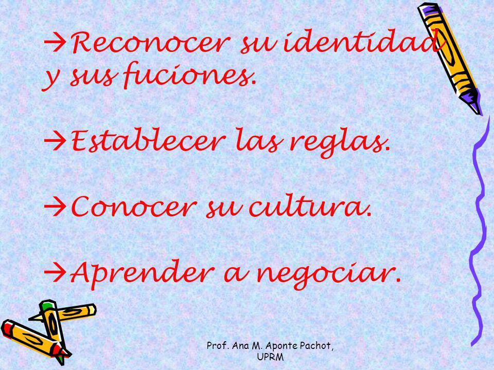 Prof. Ana M. Aponte Pachot, UPRM