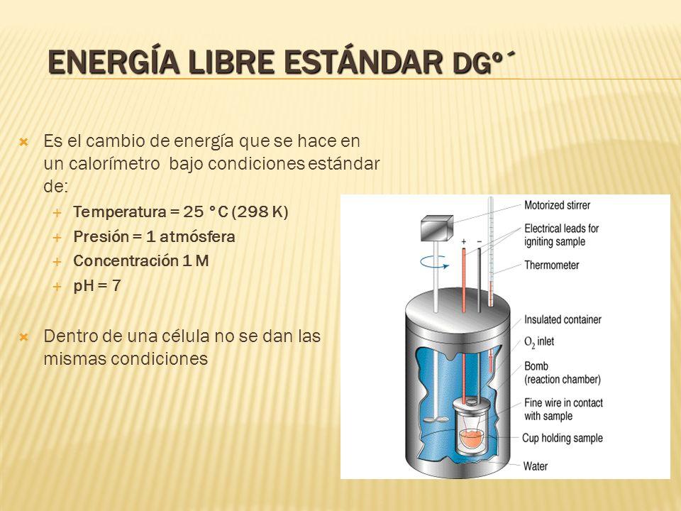 Energía Libre Estándar DGº´