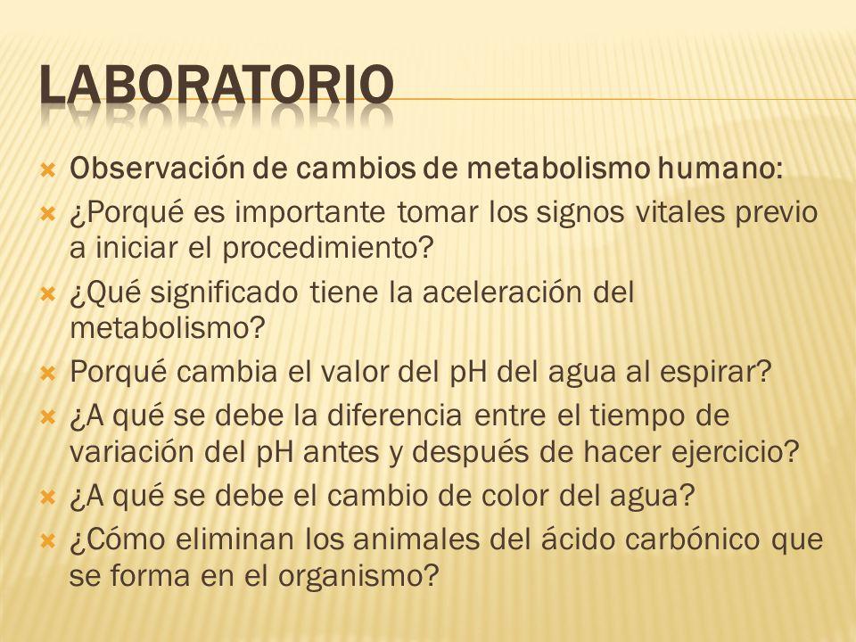 LABORATORIO Observación de cambios de metabolismo humano:
