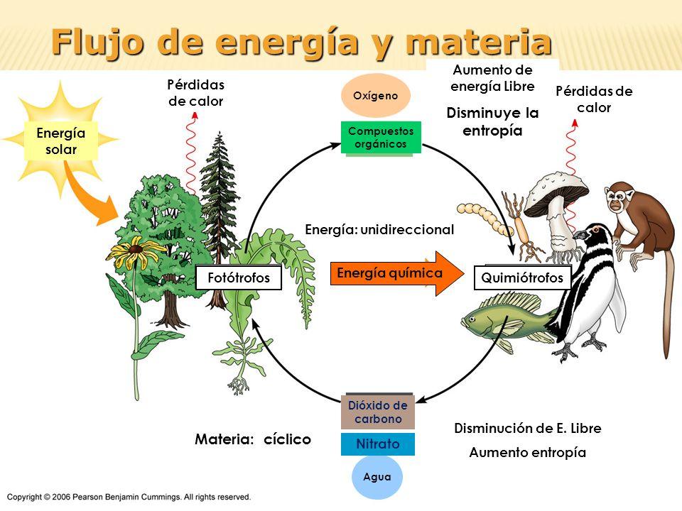 Aumento de energía Libre