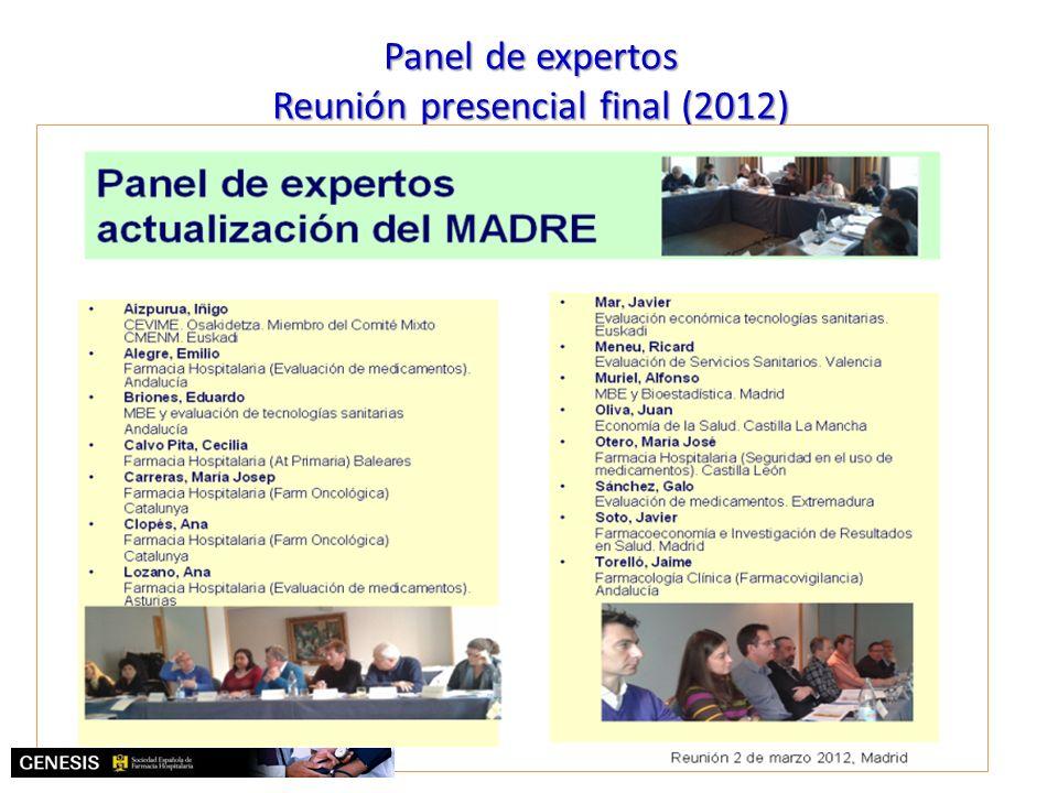 Panel de expertos Reunión presencial final (2012)