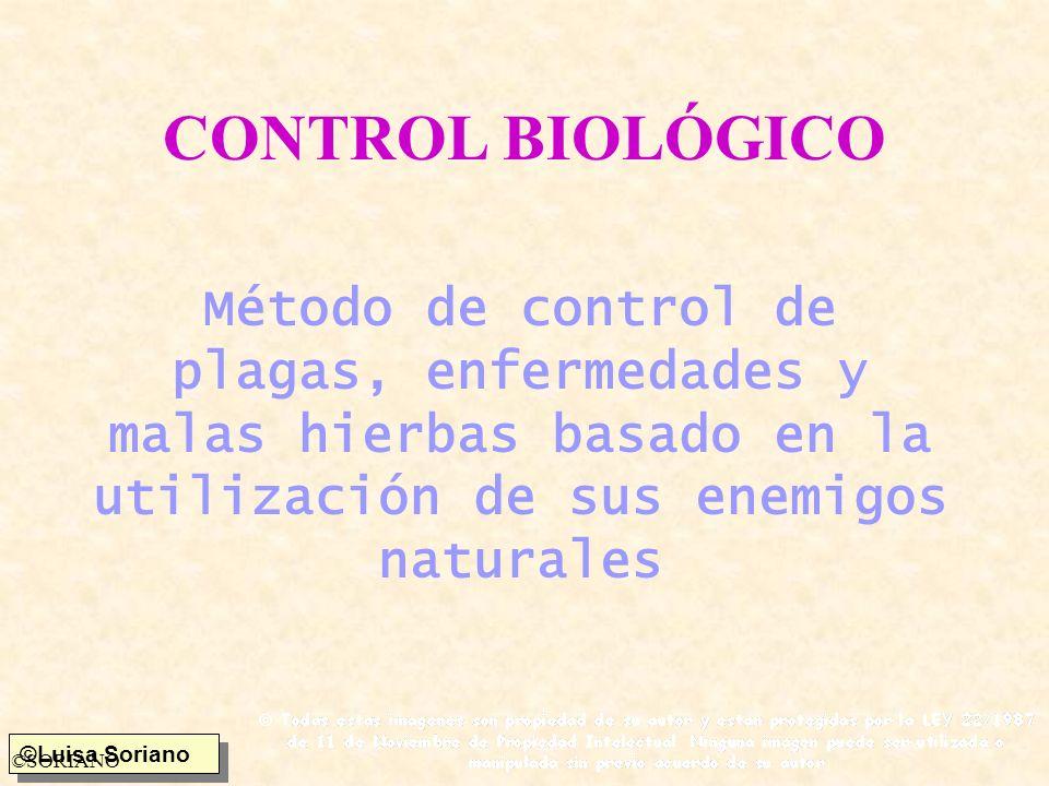 CONTROL BIOLÓGICO Método de control de plagas, enfermedades y malas hierbas basado en la utilización de sus enemigos naturales.