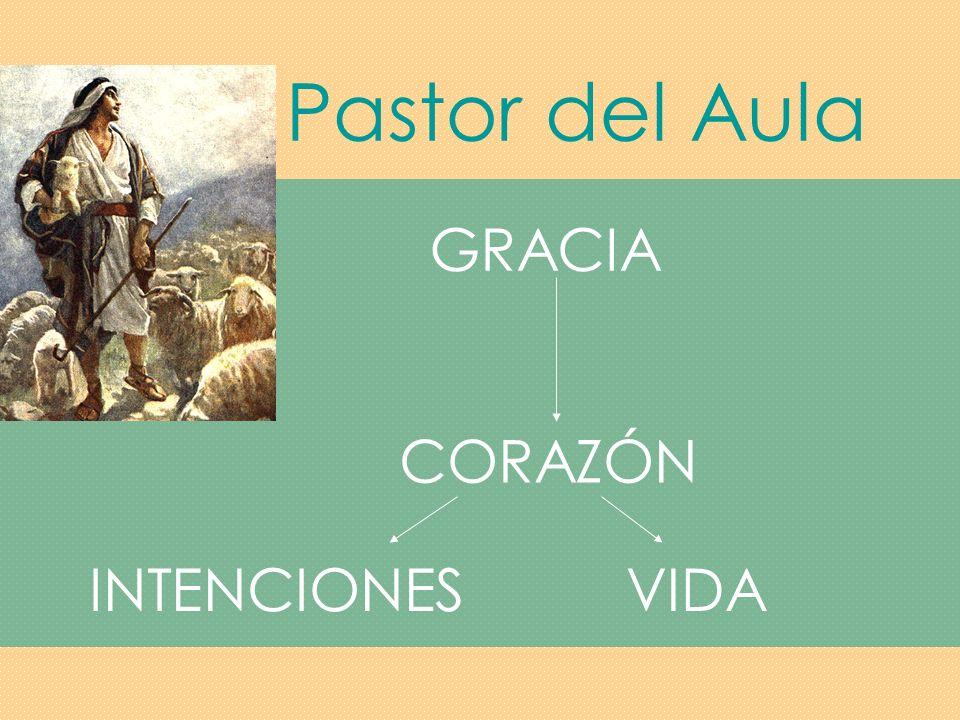 Pastor del Aula GRACIA CORAZÓN INTENCIONES VIDA