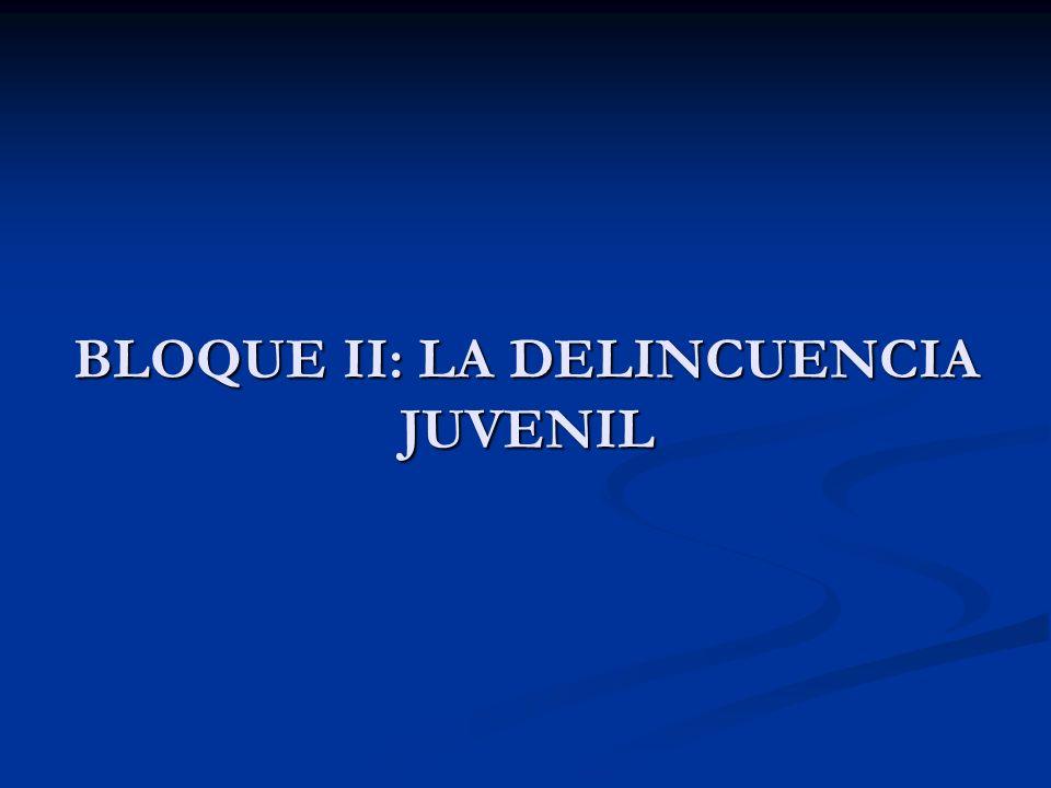BLOQUE II: LA DELINCUENCIA JUVENIL