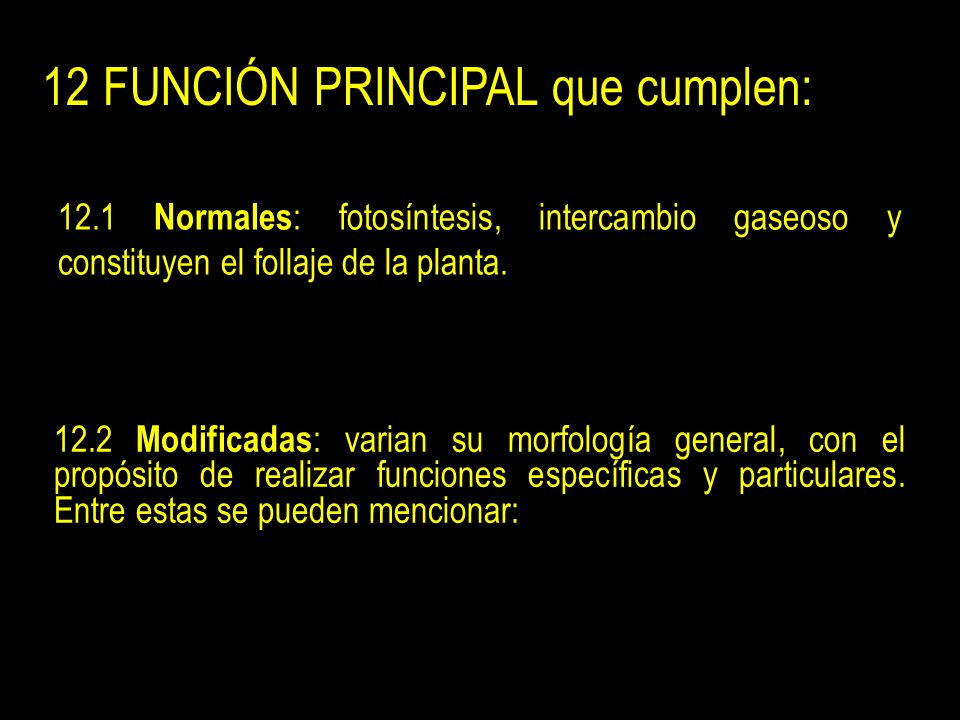 12 FUNCIÓN PRINCIPAL que cumplen: