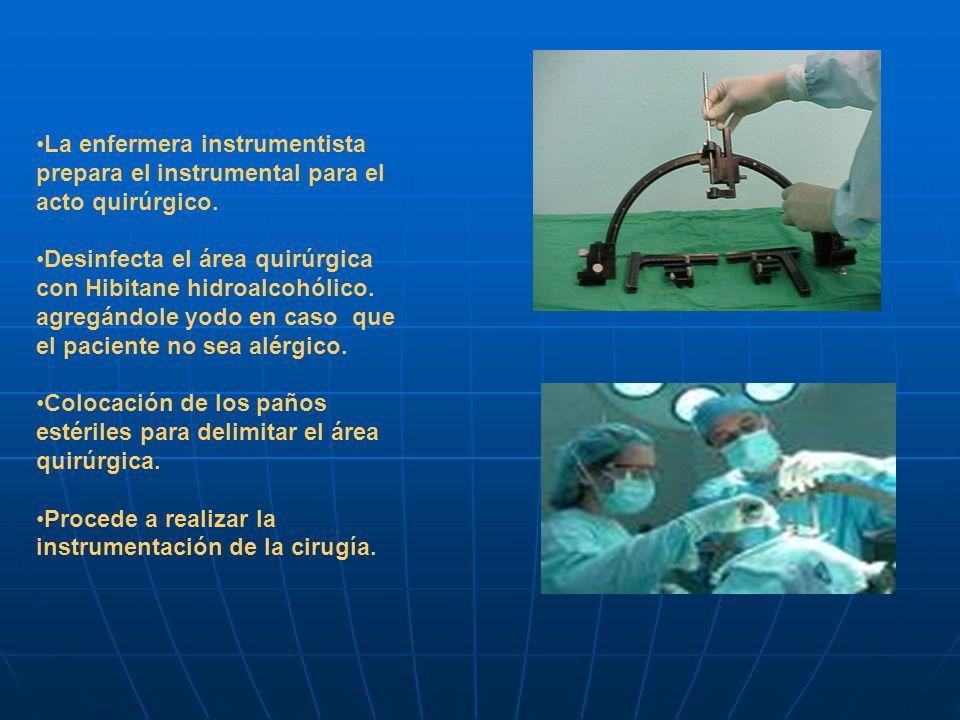 La enfermera instrumentista prepara el instrumental para el acto quirúrgico.
