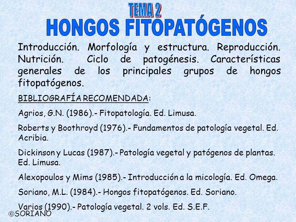 HONGOS FITOPATÓGENOS TEMA 2