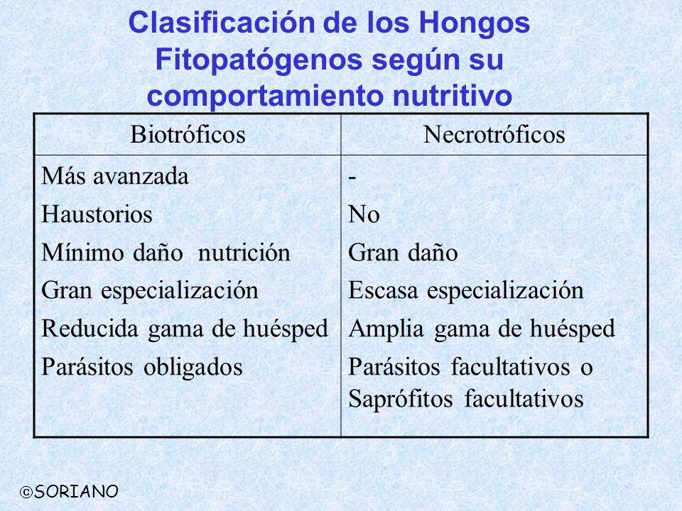 Clasificación de los Hongos Fitopatógenos según su comportamiento nutritivo