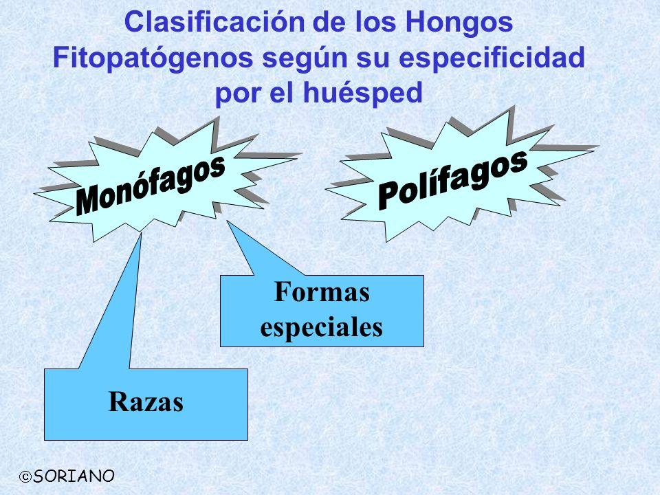 Clasificación de los Hongos Fitopatógenos según su especificidad por el huésped